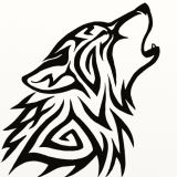 Lonewolf24