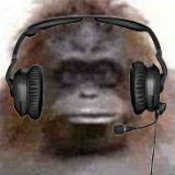 PeterHR - FlightAware user avatar
